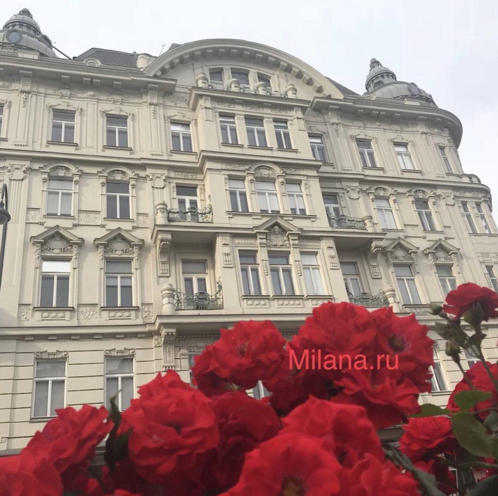 Вена - Milana.Ru